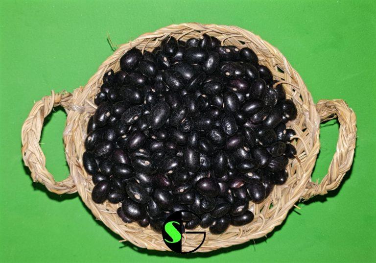 Alubias a granel tolosanas negras