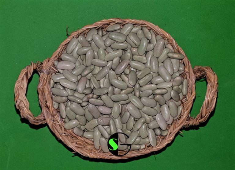 Alubias a granel Verdina de Asturias
