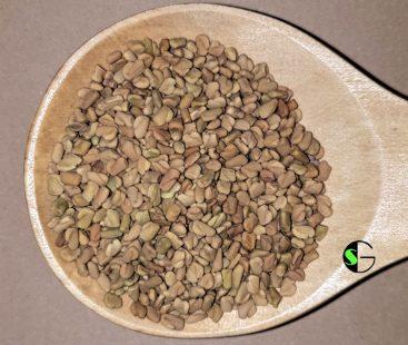 Fenogreco a granel