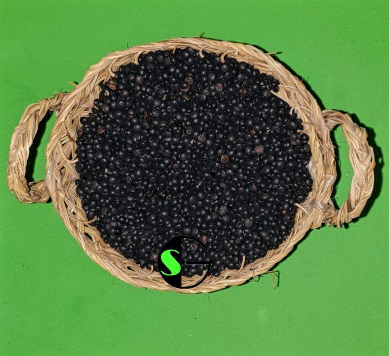 Lentejas a granel caviar